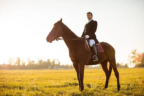 hombre paseos un caballo en el prado - equitación fotografías e imágenes de stock