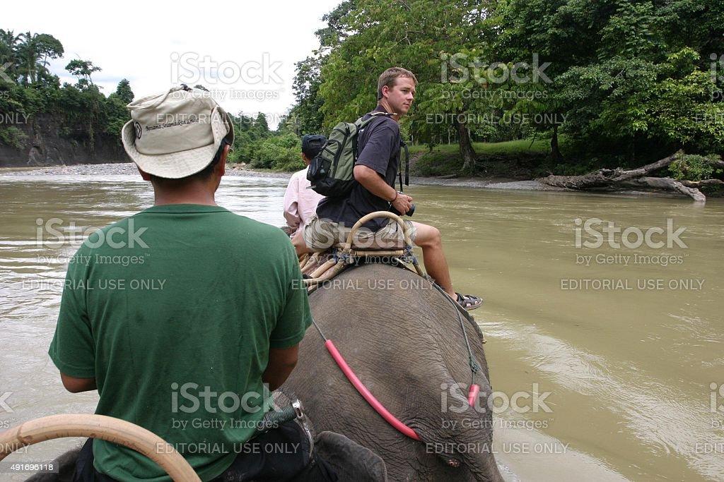 Mann reiten Elefanten im Fluss – Foto