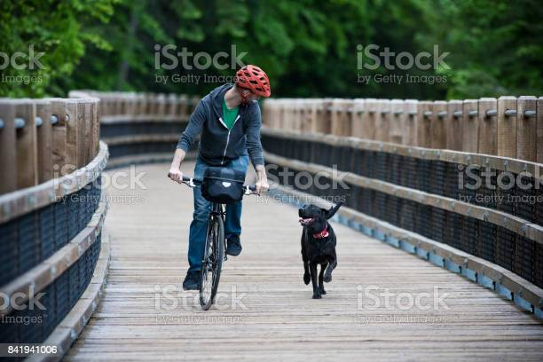 Man rides his bike in the forest with his dog on a wooden pedestrian picture id841941006?b=1&k=6&m=841941006&s=612x612&h= 4anrt6ykyyd0shg9whhy5i8hpz2r2a yjacn373r3e=