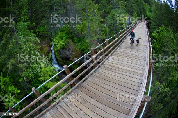 Man rides his bike with his dog on a wooden pedestrian bridge past a picture id841940852?b=1&k=6&m=841940852&s=612x612&h=s50eolfg0ke7jushevnhulkbcuou674xrfwj23ynzuk=