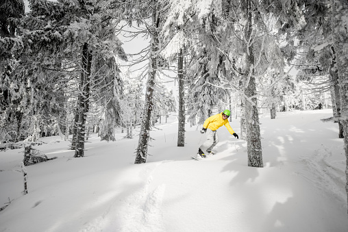 Man riding a snowboard in the snowy forest