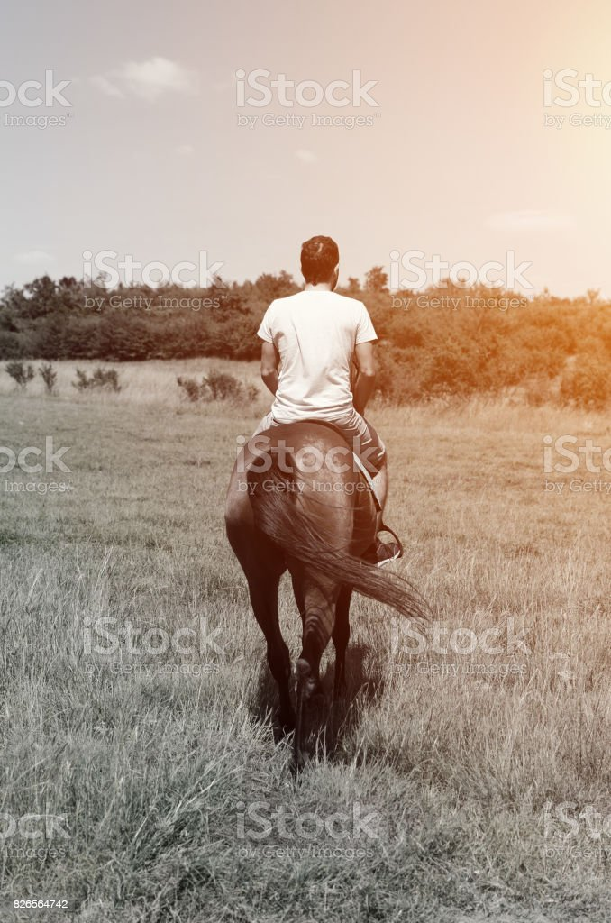 man riding horse stock photo