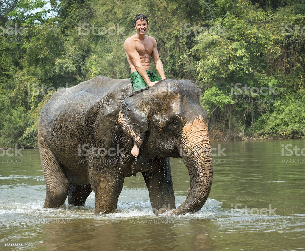Man riding on an Elephant, Tropical Rain Forest royalty-free stock photo