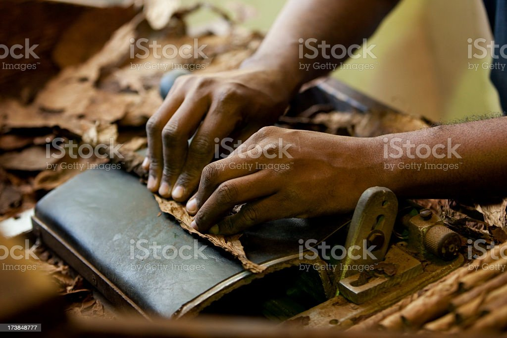 Man rolling Cuban cigar on traditional machine  stock photo