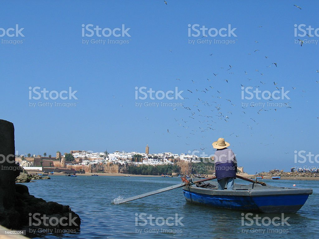 Man Rowing Boat royalty-free stock photo