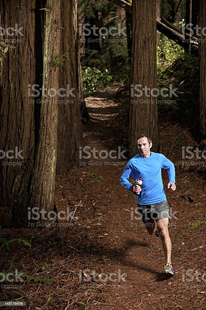 Man Running Along Trail in Redwood Forest stock photo
