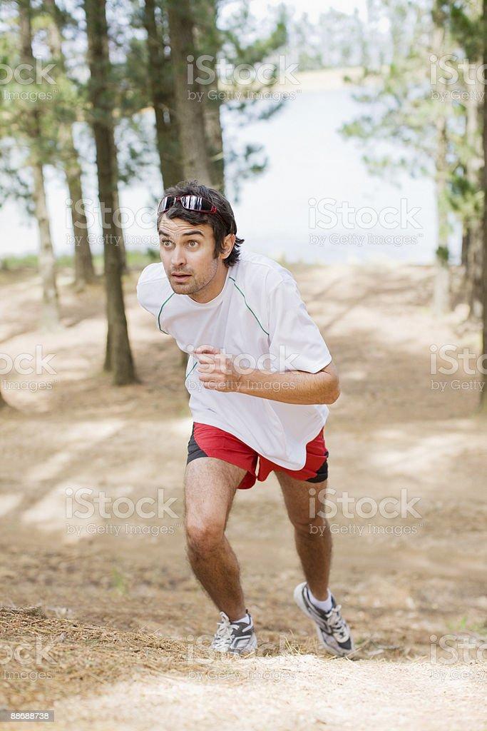 Homme jogging dans la forêt photo libre de droits