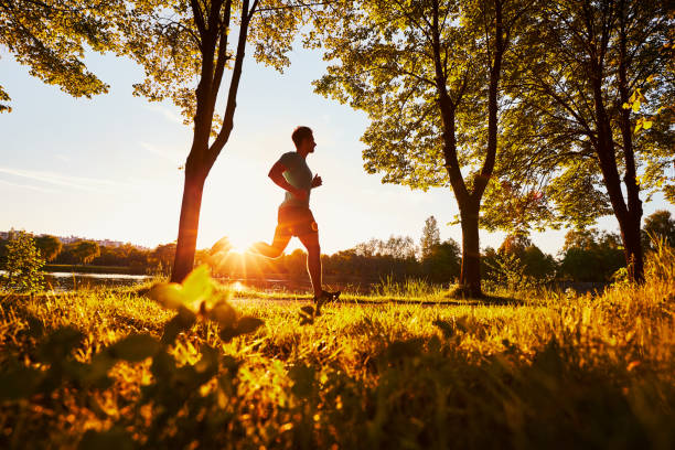 Man running in park during sunny summer sunset stock photo