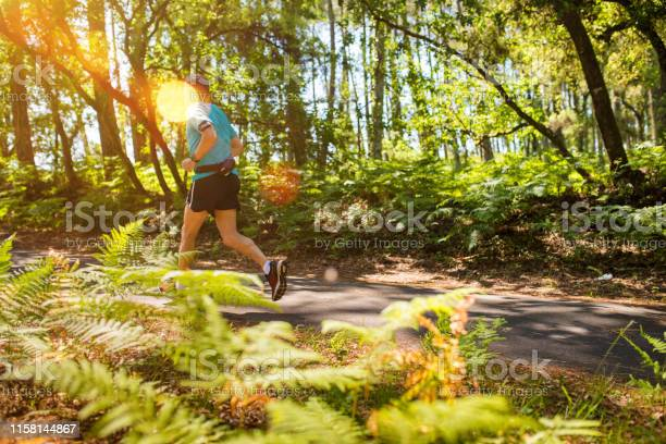 Photo of man running in the beautiful forest of Landes
