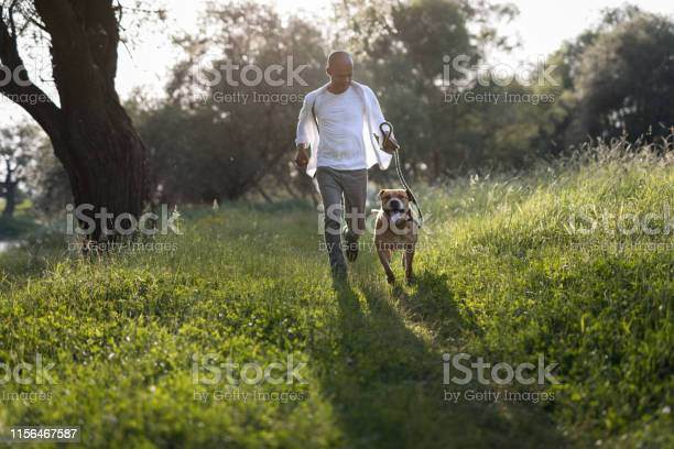 Man running with his dog at sunset picture id1156467587?b=1&k=6&m=1156467587&s=612x612&h=7myog3ndlk hlseubcfzowi2dsx6cwy0ihb 3 lhdi8=
