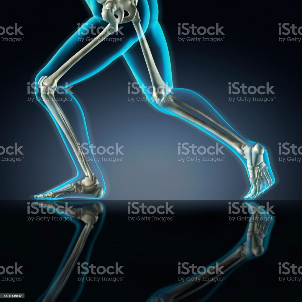 Man Running Xray View Of Leg Bones Stock Photo More Pictures Of