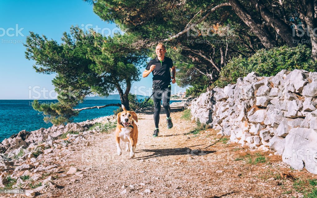 Man runs with dog near the sea stock photo