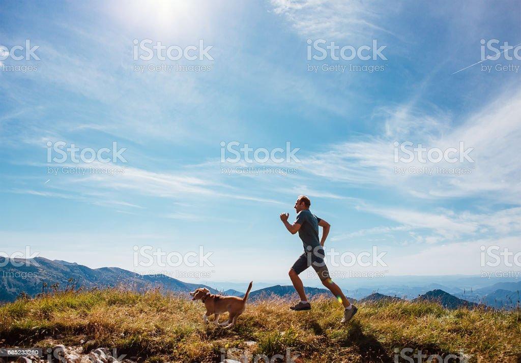 Man runs with his beagle dog on mountain top stock photo