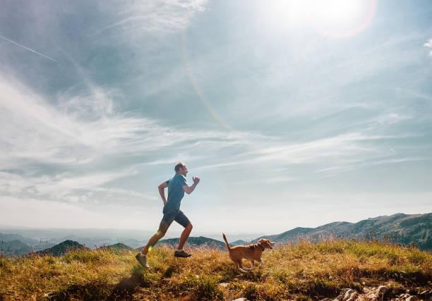 man kör med sin beaglehund på bergets topp - jogging hill bildbanksfoton och bilder