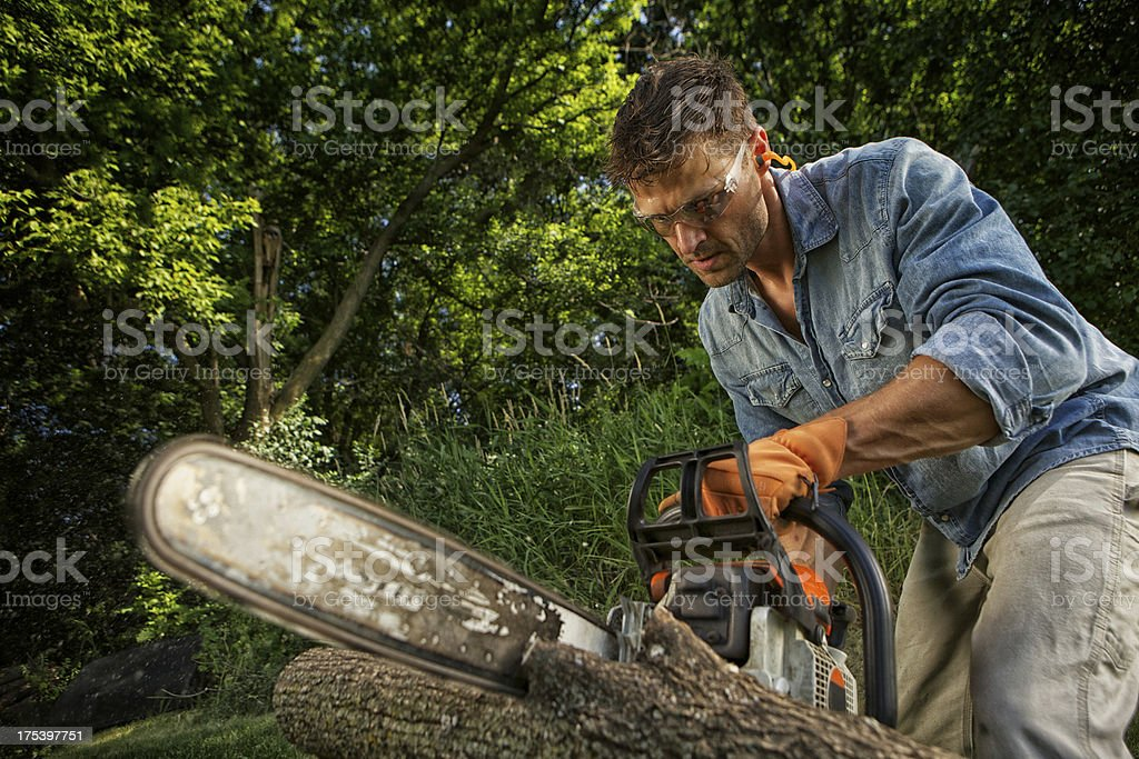 Man sawing a log stock photo