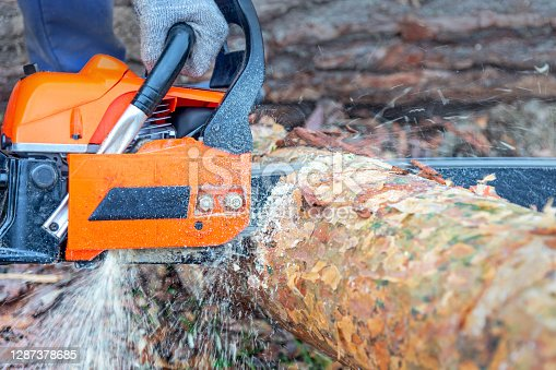 man sawing logs with an orange chainsaw