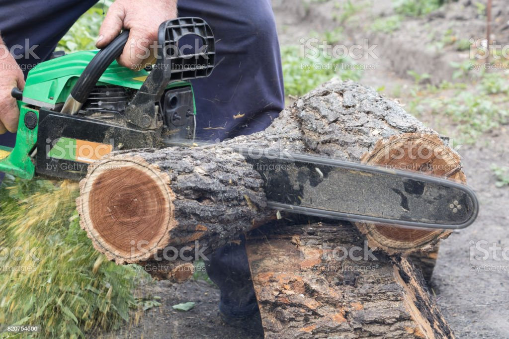 Man saws a log with a chainsaw stock photo