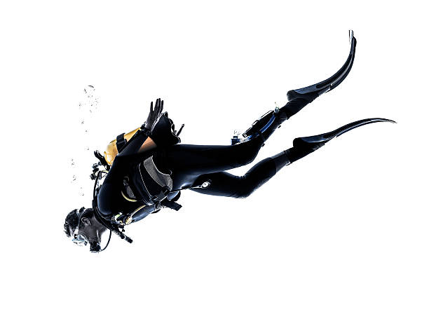 man scuba diver diving silhouette isolated one caucasian scuba diver diving man  in studio  silhouette isolated on white background underwater diving stock pictures, royalty-free photos & images