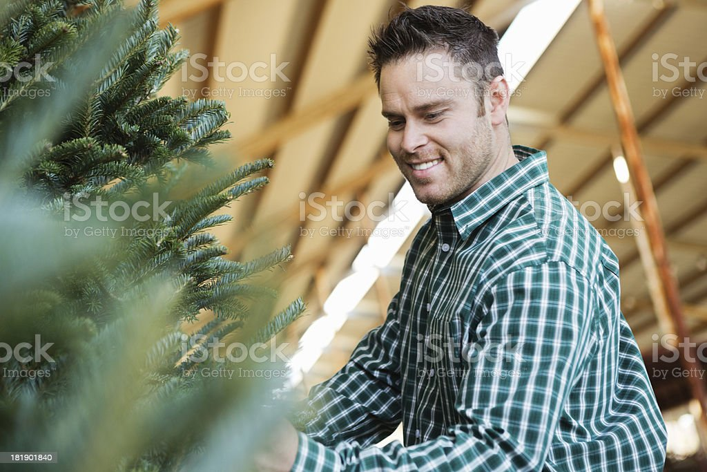 Man selecting Christmas tree to purchase royalty-free stock photo