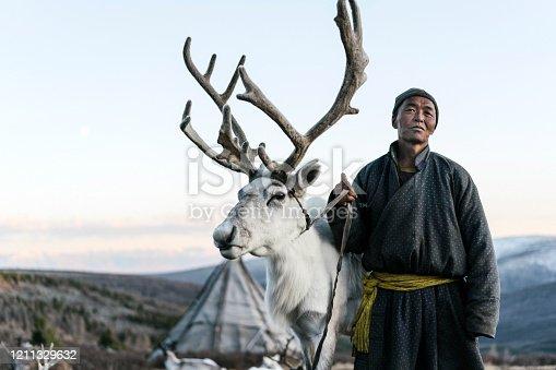 Indigenous man  shepherding reindeers  in Mongolia in winter