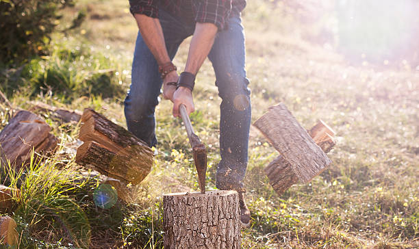 Man shirt chopping wood with axe Man in jeans and checkered shirt chopping wood with axe. Action lumberjack stock pictures, royalty-free photos & images
