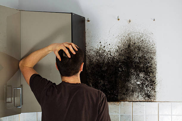 Man shocked to mold a kitchen cabinet. stock photo