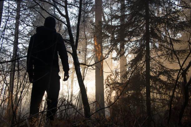 Silhueta do homem na floresta iluminada por céu da noite - foto de acervo