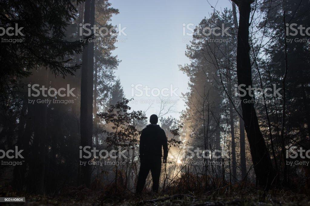 Silhueta de homem vendo o brilho entre as árvores da floresta - foto de acervo