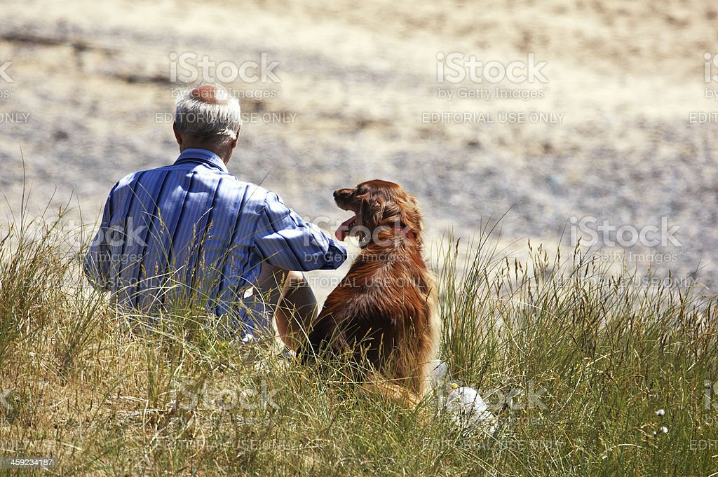 Man sitting in sand dunes with red setter royalty-free stock photo