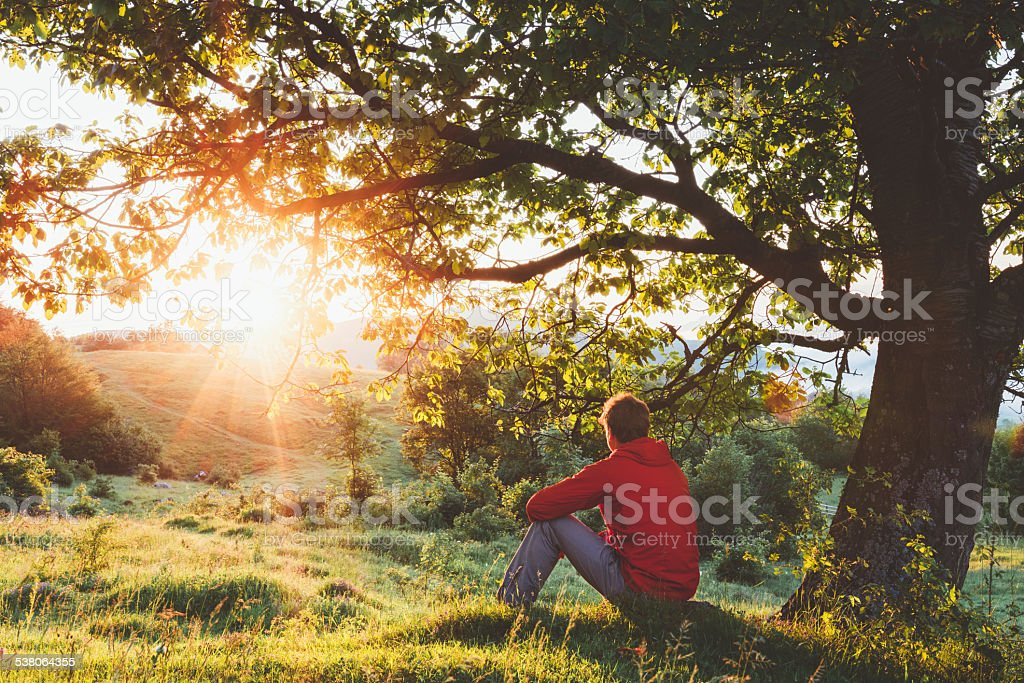 Man sitting under a tree and admiring the sunrise stock photo