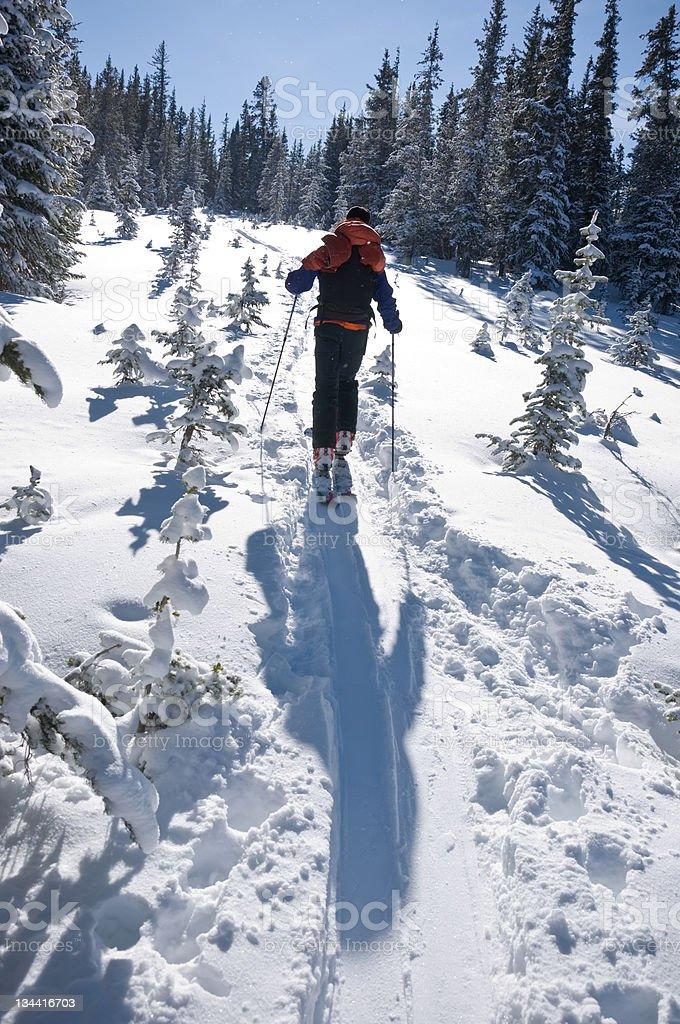 Man Ski Touring with Fresh Winter Snow stock photo