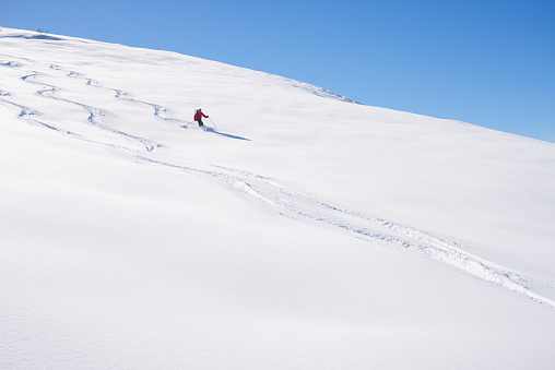 Man skiing off piste on snowy slope in the italian Alps, with bright sunny day of winter season. Powder snow with ski tracks. Toned image