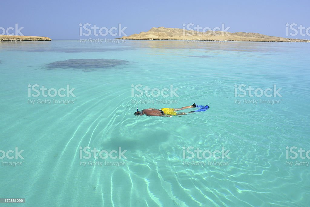 Man Snorkelling royalty-free stock photo