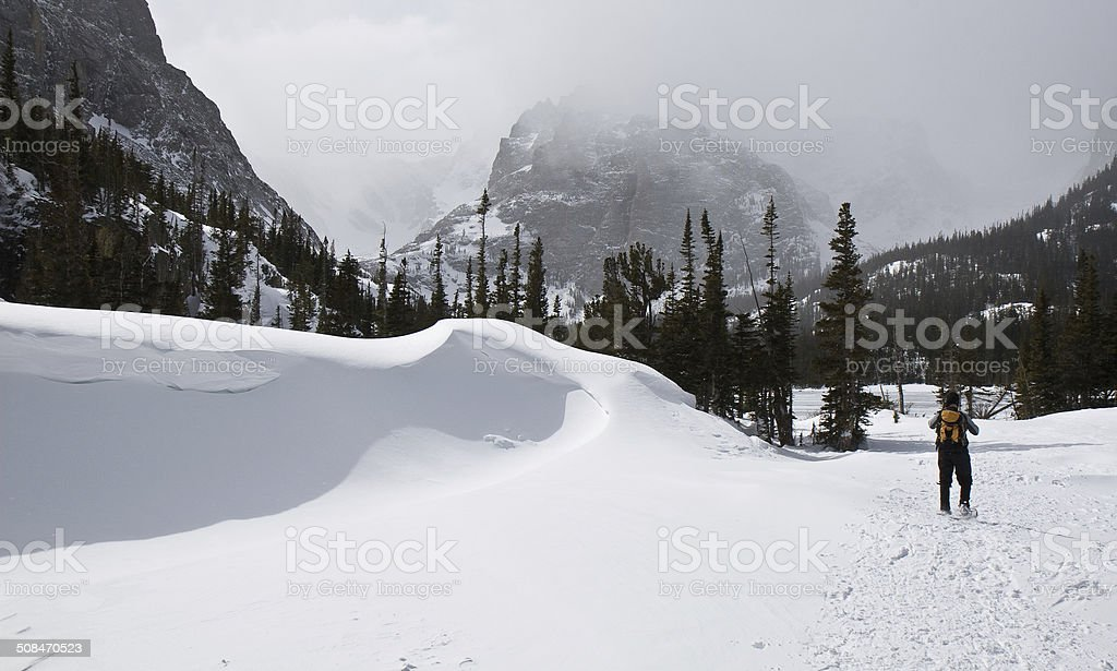 Man Snowshoeing Past Snow Drift in Rocky Mountain National Park stock photo