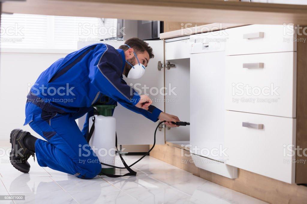 Man Spraying Pesticide In Kitchen stock photo