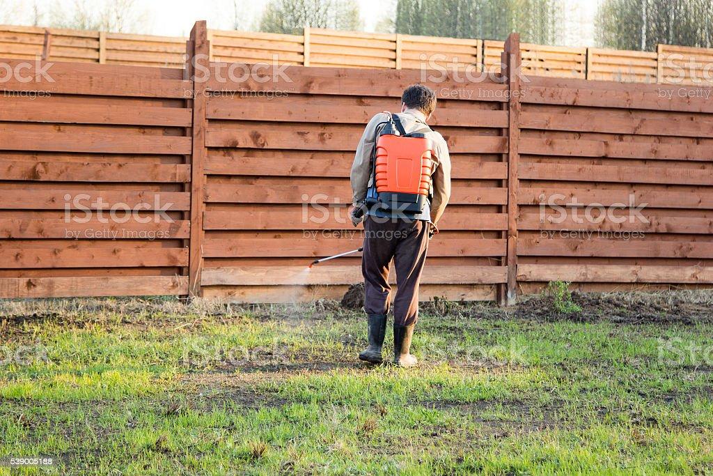 man sprays grass with herbicide of a knapsack sprayer stock photo