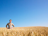 istock A man standing in a wheat field by himself  147278296