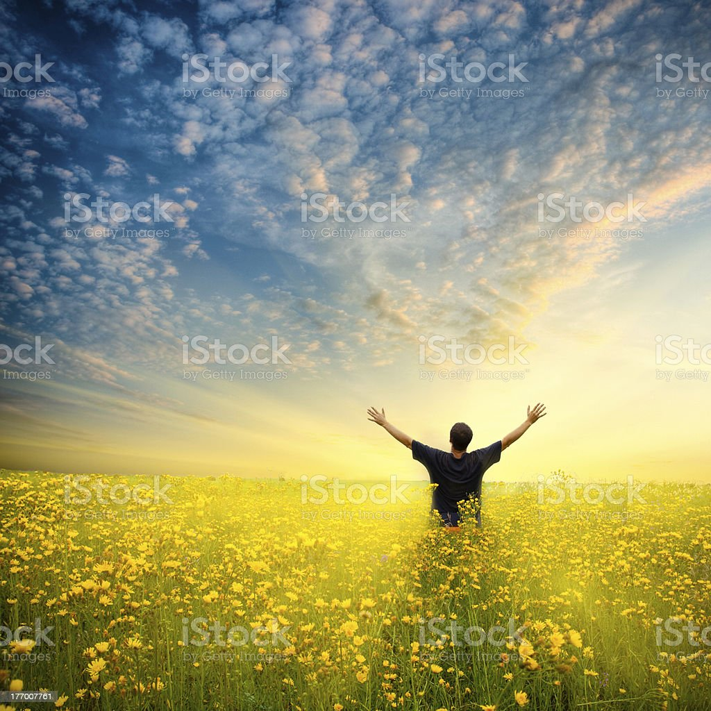 Man standing in field of yellow flowers stock photo