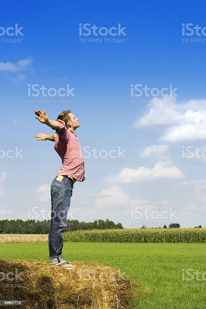 Man standing on a haystack royalty-free stock photo