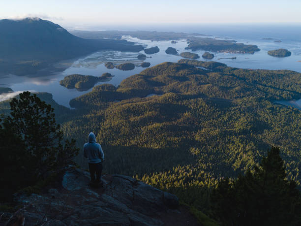 Man standing on the edge of cliff above bay Bay with forest, islands and panoramic view vancouver island stock pictures, royalty-free photos & images