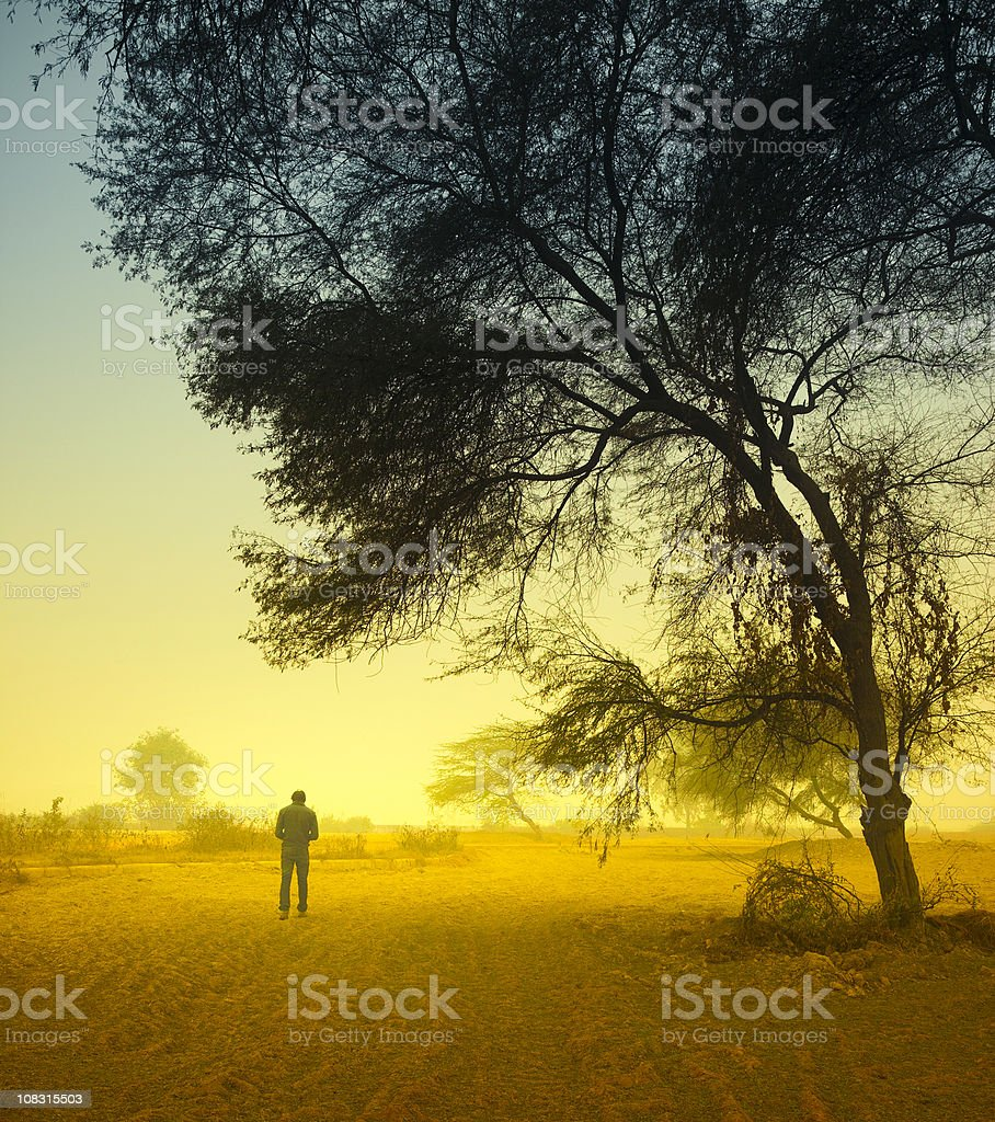 Man standing under a tree on foggy morning stock photo