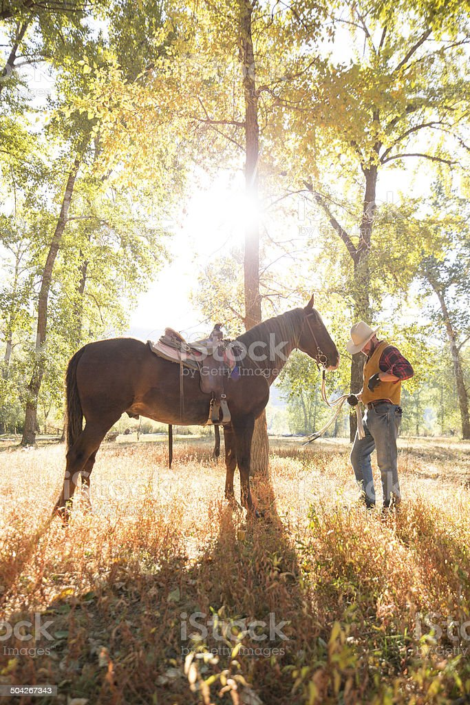 Man stands near tree resting with horse after riding royalty-free stock photo