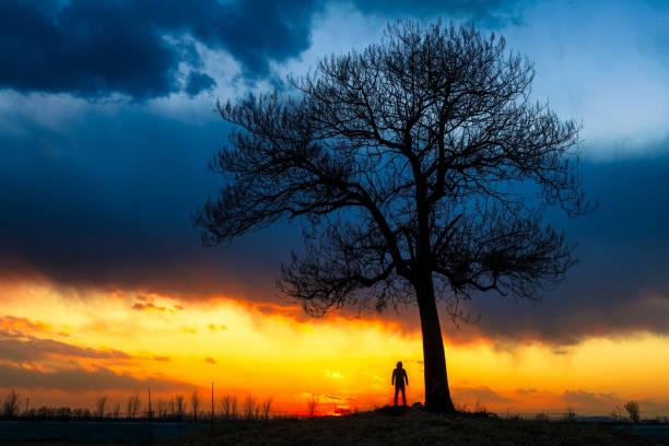 Ein Mann steht bei Sonnenuntergang unter einem großen Baum – Foto