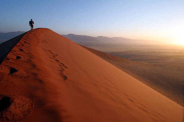 Man stood on top of a sand dune at sunset Man approaching the summit of Dune 45, Sossusvlei, Namibia. Sunrise is visible on the right-hand side of the image. Other Africa images: namib desert stock pictures, royalty-free photos & images