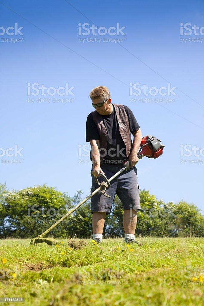 man strimming stock photo