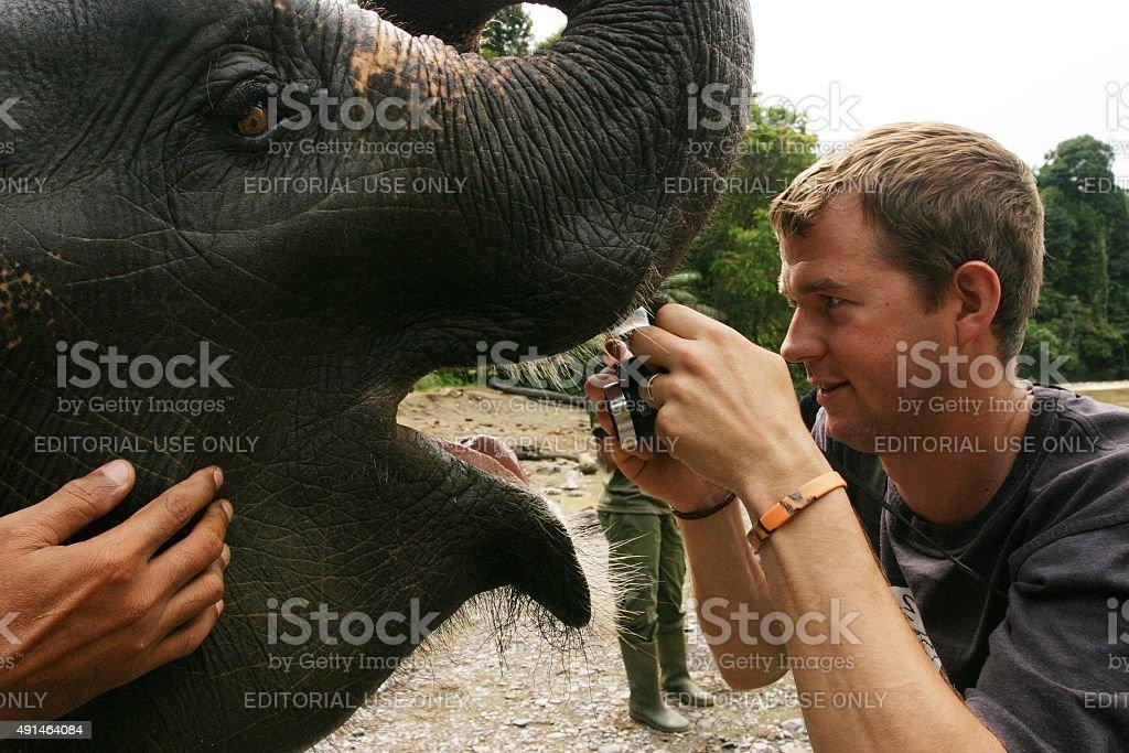 Mann nimmt Nahaufnahme Foto des Asian elephant Mund – Foto