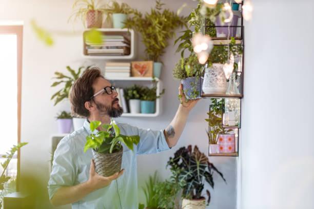 Mann kümmert sich um ihre Topfpflanzen zu Hause – Foto