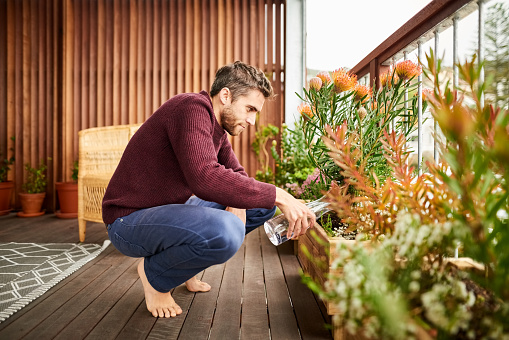 Young man giving water to plants in the balcony of his house