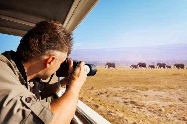 man taking photo of elephants at african savannah - wildlife travel stock pictures, royalty-free photos & images