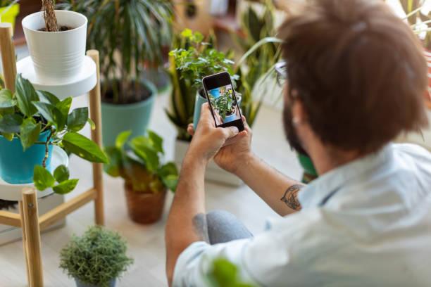 Mann macht Foto von Topfpflanze mit seinem Smartphone – Foto